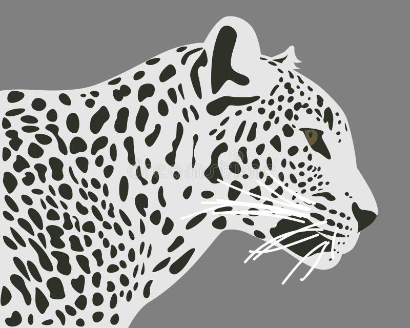 Διανυσματική απεικόνιση λεοπαρδάλεων της Κεϋλάνης ελεύθερη απεικόνιση δικαιώματος