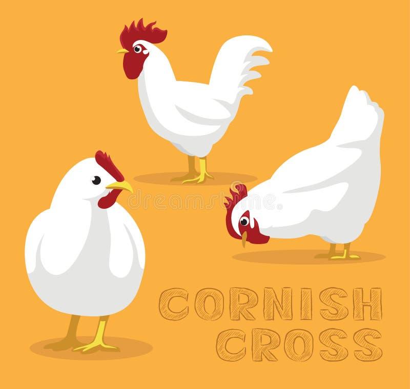 Διανυσματική απεικόνιση κινούμενων σχεδίων κοτόπουλου Cornish διαγώνια ελεύθερη απεικόνιση δικαιώματος