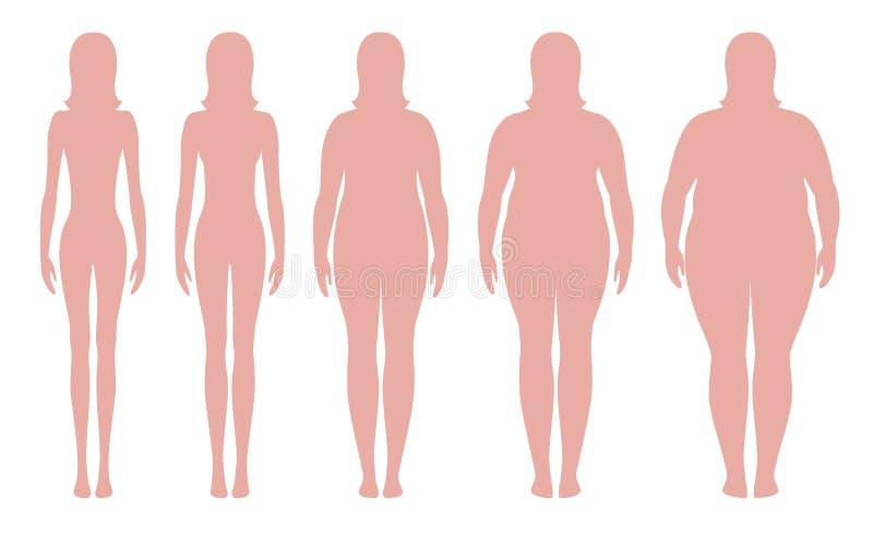 Διανυσματική απεικόνιση μαζικών δεικτών σώματος από το λειποβαρής εξαιρετικά σε παχύσαρκο Σκιαγραφίες γυναικών με τους διαφορετικ ελεύθερη απεικόνιση δικαιώματος