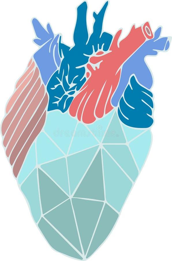 Διανυσματική απεικόνιση με την τέχνη συνδετήρων καρδιών στο ρεαλισμό στοκ εικόνες