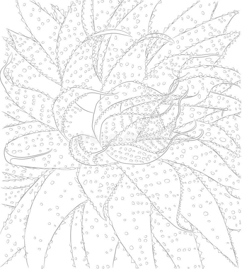 Διανυσματική απεικόνιση περιγράμματος του κάκτου με τις σπονδυλικές στήλες για το χρωματισμό του βιβλίου διανυσματική απεικόνιση