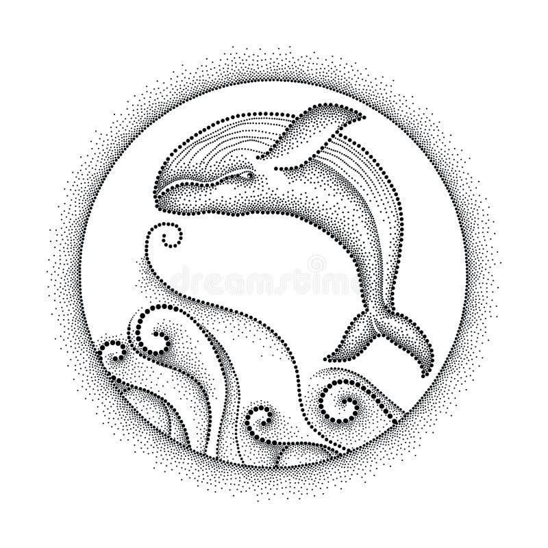 Διανυσματική απεικόνιση της διαστιγμένης humpback φάλαινας, των σγουρών γραμμών και του στρογγυλού πλαισίου ελεύθερη απεικόνιση δικαιώματος