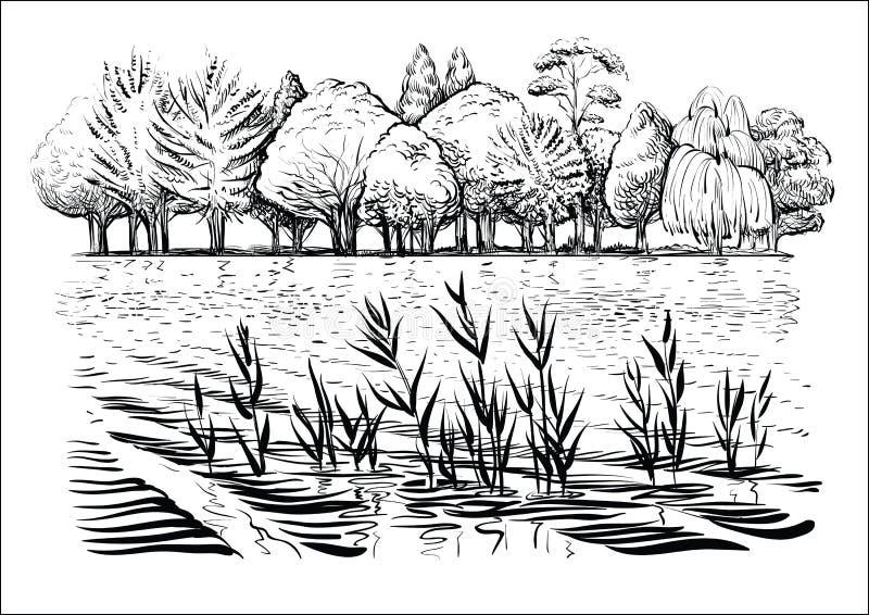 Διανυσματική απεικόνιση του τοπίου ποταμών με τα δέντρα, τα κύματα νερού και την αντανάκλαση Γραπτό σκίτσο απεικόνιση αποθεμάτων