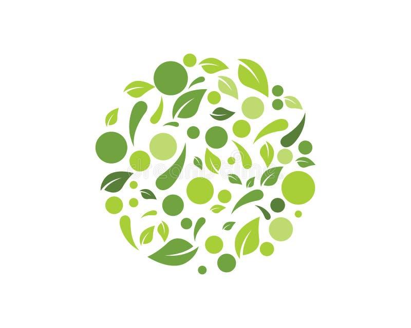 Διανυσματική απεικόνιση υποβάθρου φύλλων φύσης Eco ελεύθερη απεικόνιση δικαιώματος