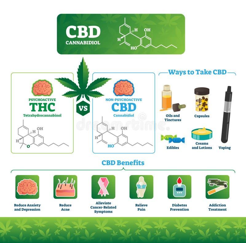Διανυσματική απεικόνιση CBD Η επονομαζόμενη ιατρική κάνναβη THC ωφελεί το infographics διανυσματική απεικόνιση