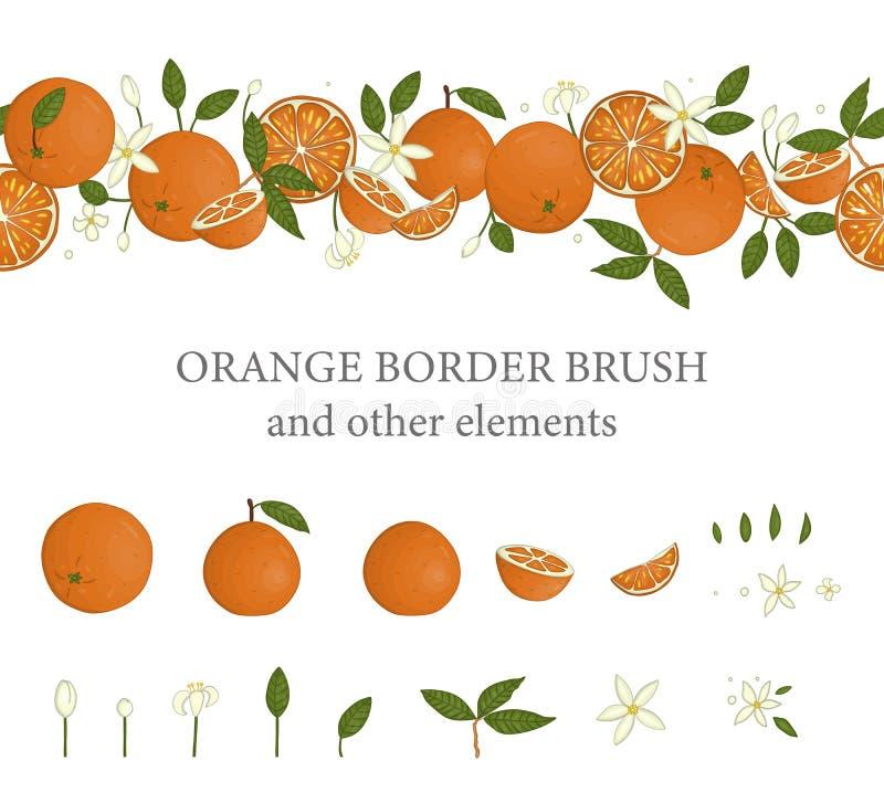 Διανυσματική βούρτσα συνόρων με τα πορτοκάλια και τα πορτοκαλιά στοιχεία σχεδίου ελεύθερη απεικόνιση δικαιώματος