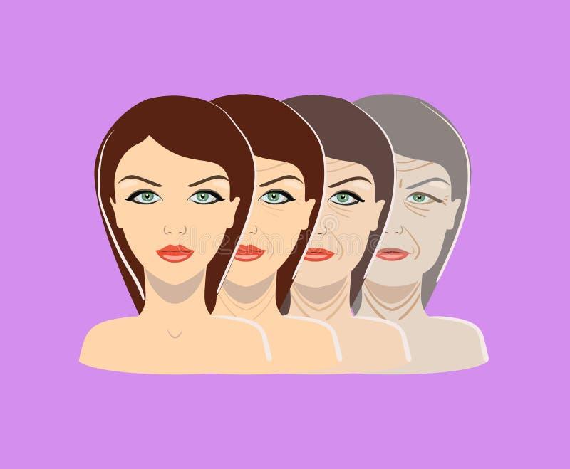 Διανυσματική διαδικασία γήρανσης Τέσσερα στάδια του προσώπου που αλλάζουν στο πορφυρό υπόβαθρο απεικόνιση αποθεμάτων