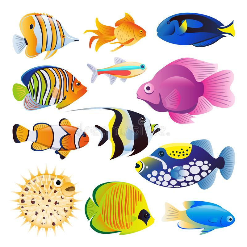 Διανυσματική επίπεδη απεικόνιση κινούμενων σχεδίων ψαριών θάλασσας Τροπικά ωκεάνια εξωτικά ψάρια ενυδρείων σκοπέλων ή σπιτιών καθ διανυσματική απεικόνιση