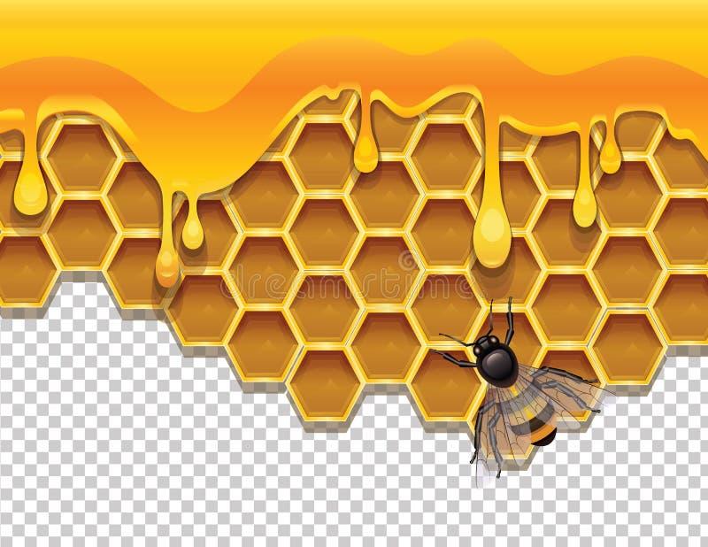 Διανυσματική ζωηρόχρωμη απεικόνιση των κηρηθρών με το υγρό μέλι και μια μέλισσα απεικόνιση αποθεμάτων