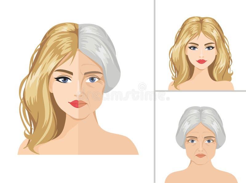 Διανυσματική διαδικασία γήρανσης Νέο κορίτσι και ηλικιωμένη γυναίκα ελεύθερη απεικόνιση δικαιώματος