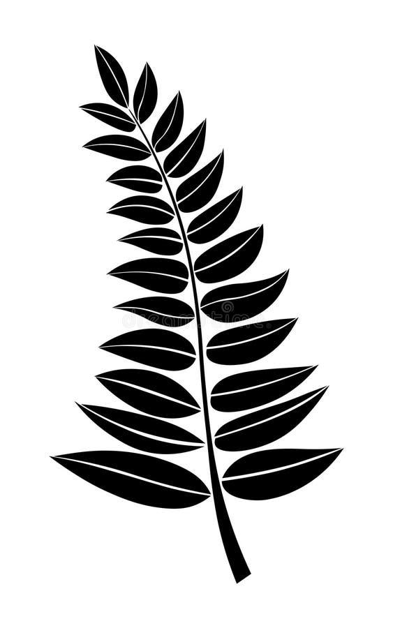 Διανυσματική μαύρη σκιαγραφία ενός κλάδου με τα φύλλα διάνυσμα εικόνας απεικόνισης στοιχείων σχεδίου Το χέρι σύρει τους κλάδους φ απεικόνιση αποθεμάτων