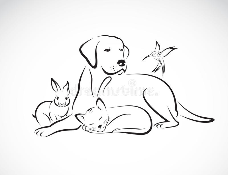 Διανυσματική ομάδα κατοικίδιων ζώων - σκυλί, γάτα, πουλί, κουνέλι, απεικόνιση αποθεμάτων