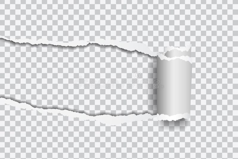 Διανυσματική ρεαλιστική απεικόνιση του σχισμένου εγγράφου με την κυλημένη άκρη επάνω ελεύθερη απεικόνιση δικαιώματος