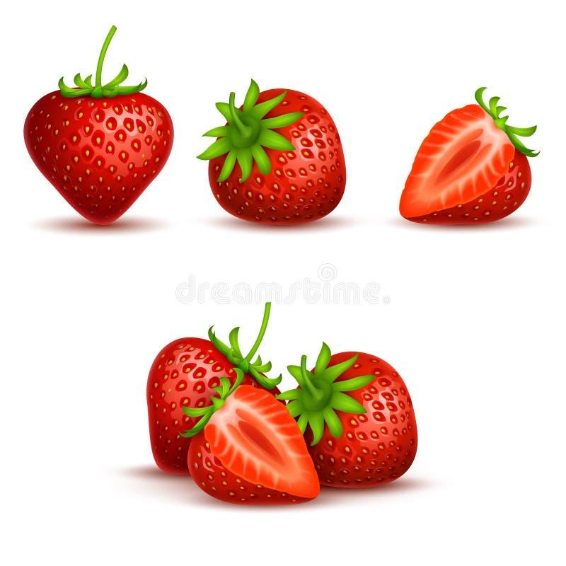 Διανυσματική ρεαλιστική γλυκιά και φρέσκια φράουλα που απομονώνεται στο άσπρο υπόβαθρο ελεύθερη απεικόνιση δικαιώματος