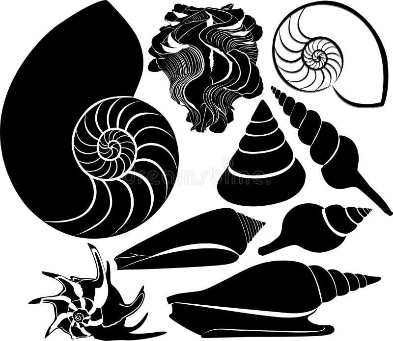 Διανυσματική σκιαγραφία κοχυλιών θάλασσας ωκεάνιος υδρόβιος υποβρύχιος πανίδας θάλασσας nautilus διανυσματική απεικόνιση