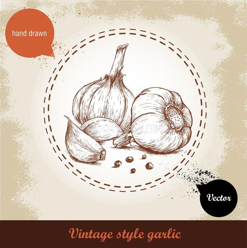 Διανυσματική συρμένη χέρι απεικόνιση με το garlics καρυκευμάτων και μαύρο peppercorn στο παλαιό υπόβαθρο grunge απεικόνιση αποθεμάτων