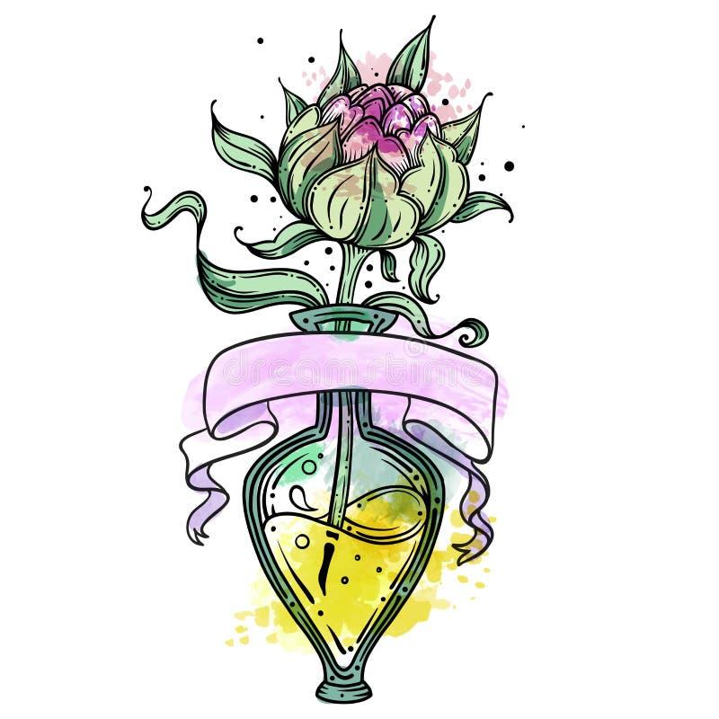 Διανυσματική συρμένη χέρι απεικόνιση περιλήψεων peony με το watercolor, peony στο βάζο γυαλιού, απομονωμένο στο λευκό υπόβαθρο Αγ απεικόνιση αποθεμάτων