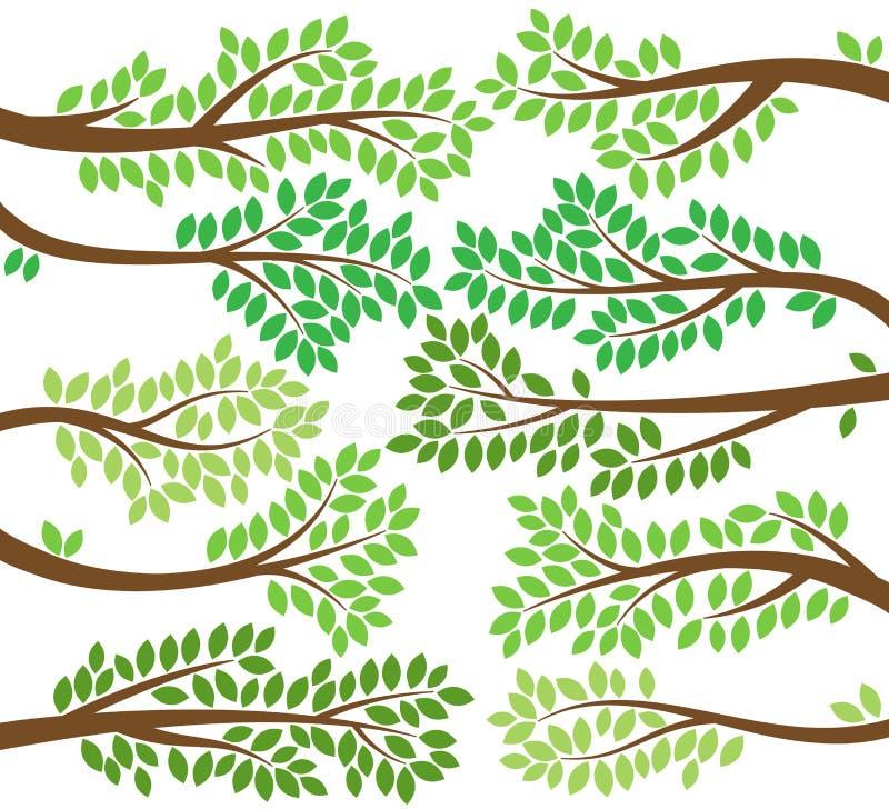 Διανυσματική συλλογή των φυλλωδών σκιαγραφιών κλάδων δέντρων απεικόνιση αποθεμάτων