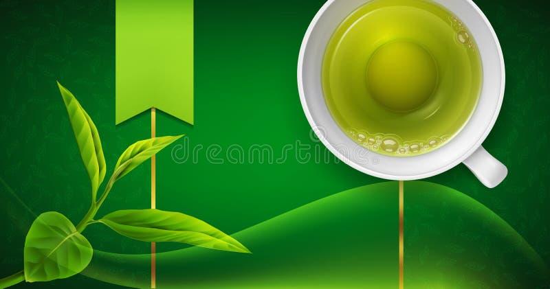 Διανυσματική τρισδιάστατη απεικόνιση με μια κούπα του πράσινων τσαγιού και των φύλλων σε ένα γ ελεύθερη απεικόνιση δικαιώματος