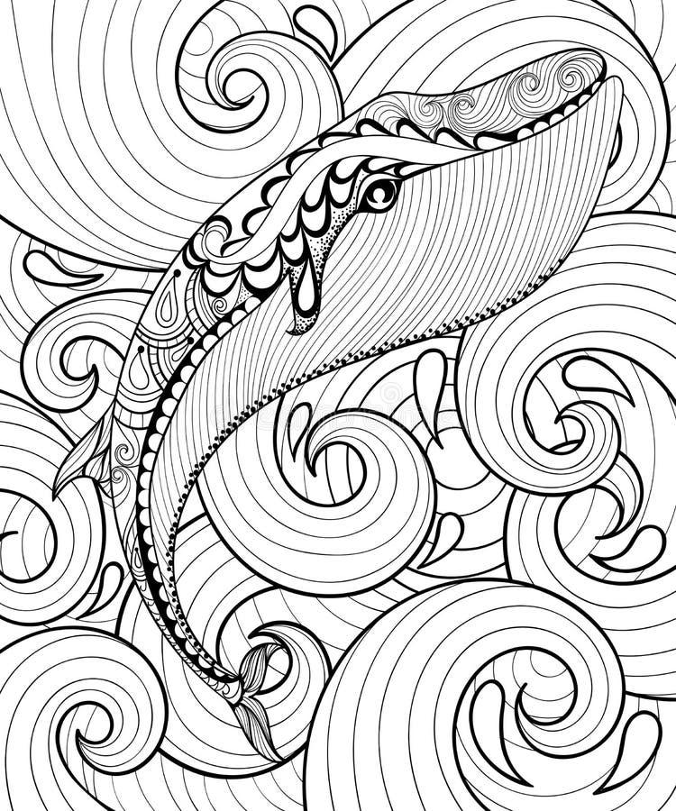 Διανυσματική φάλαινα zentangle στη θάλασσα, τυπωμένη ύλη για την ενήλικη χρωματίζοντας σελίδα A4 διανυσματική απεικόνιση