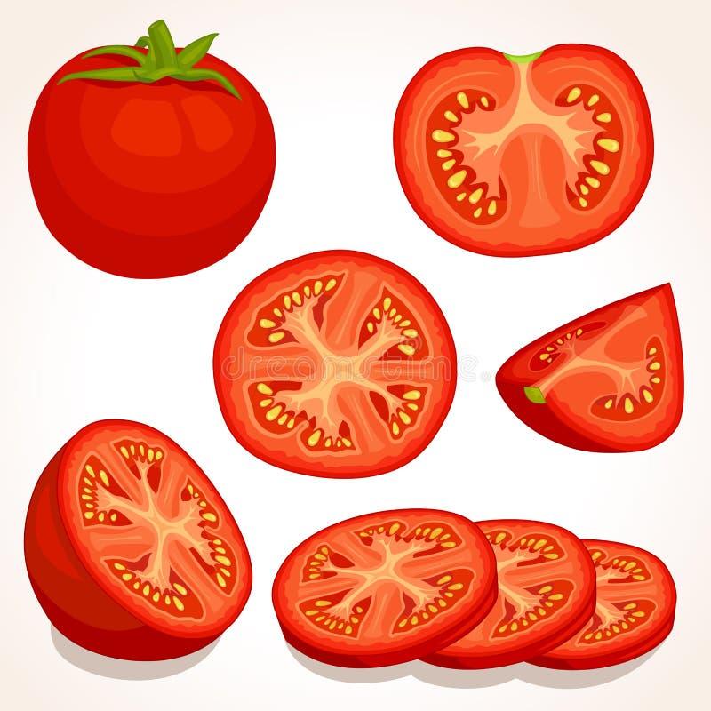 Διανυσματική φρέσκια ντομάτα Τεμαχισμένες, ολόκληρες, κατά το ήμισυ κόκκινες ντομάτες απεικόνιση αποθεμάτων