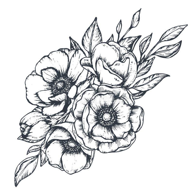 Διανυσματική floral σύνθεση συρμένων των χέρι λουλουδιών anemone διανυσματική απεικόνιση