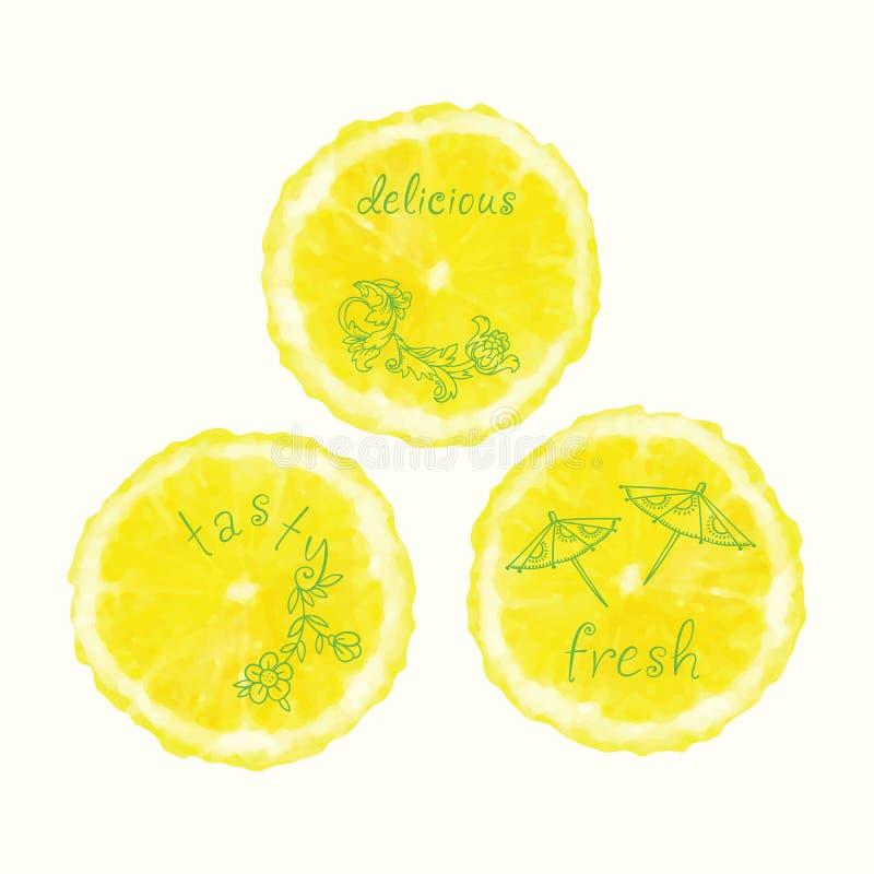 Διανυσματικοί κύκλοι φετών watercolor πορτοκαλιοί, συρμένα χέρι doodle στοιχεία απεικόνιση αποθεμάτων