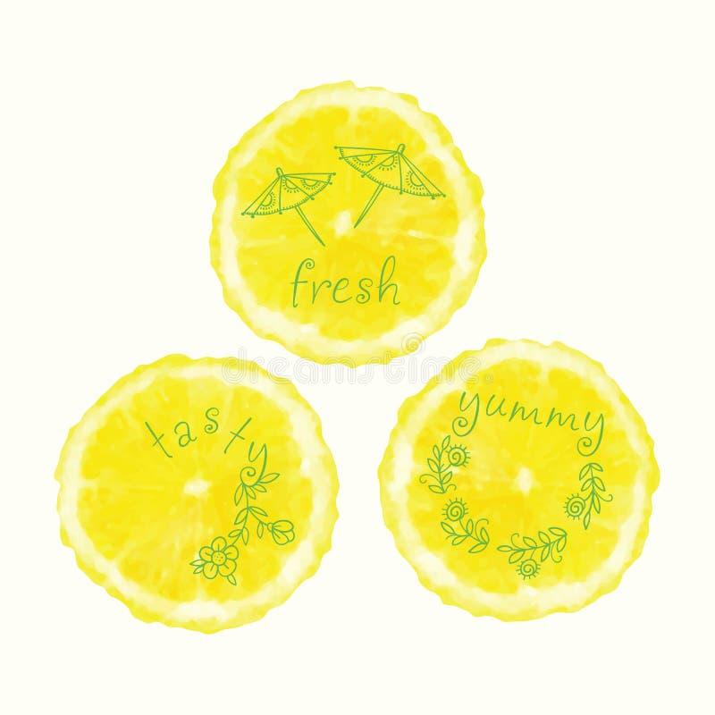 Διανυσματικοί κύκλοι φετών watercolor πορτοκαλιοί, συρμένα χέρι doodle στοιχεία διανυσματική απεικόνιση