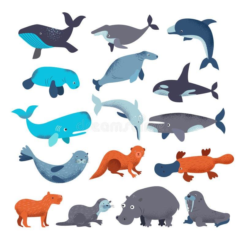 Διανυσματικοί οδόβαινος και φάλαινα δελφινιών χαρακτήρα νερού θηλαστικών θάλασσας ζωικοί στο sealife ή το ωκεάνιο θαλάσσιο σύνολο διανυσματική απεικόνιση
