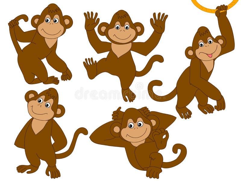 Διανυσματικοί πίθηκοι καθορισμένοι διανυσματική απεικόνιση
