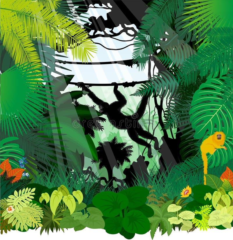 Διανυσματικοί πίθηκοι στη ζούγκλα διανυσματική απεικόνιση