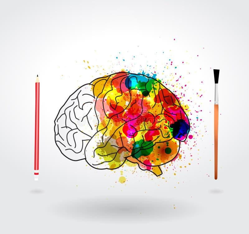 Διανυσματικός εγκέφαλος δημιουργικότητας ελεύθερη απεικόνιση δικαιώματος