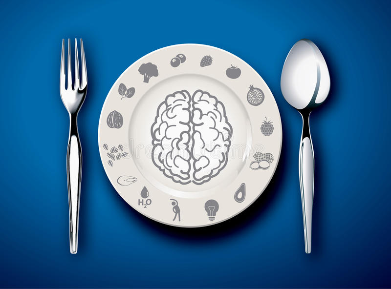 Διανυσματικός εικονογράφος των τροφίμων για τον εγκέφαλο ελεύθερη απεικόνιση δικαιώματος