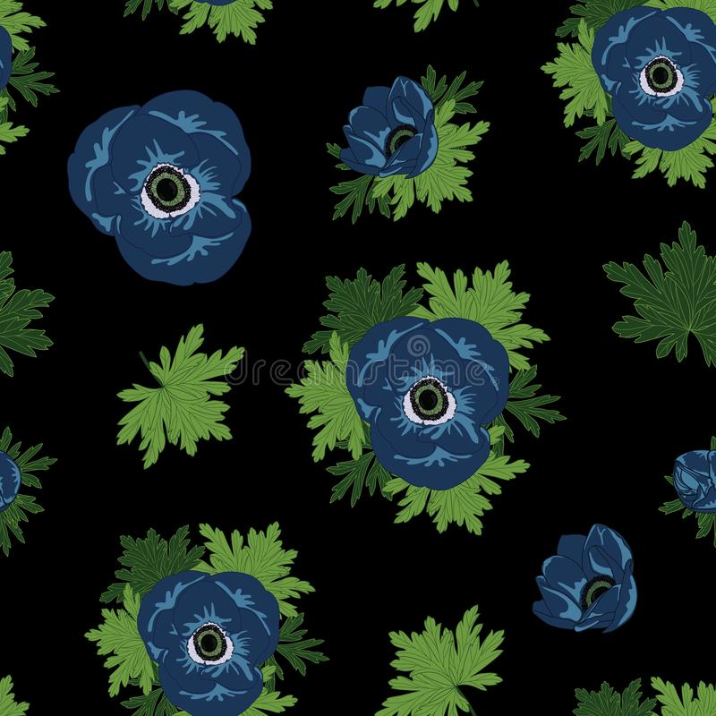 Διανυσματικός floral επαναλαμβάνει το άνευ ραφής σχέδιο με τα μπλε λουλούδια anemone στο μαύρο υπόβαθρο ελεύθερη απεικόνιση δικαιώματος