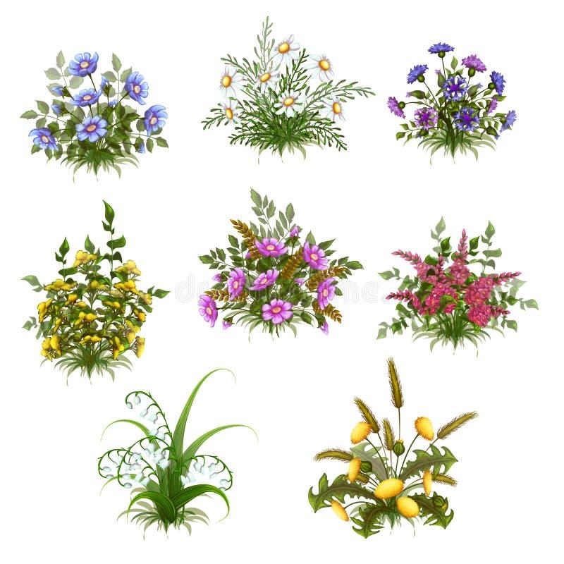 Διανυσματικός floral θάμνος που τίθεται στο διαφανές υπόβαθρο απεικόνιση αποθεμάτων