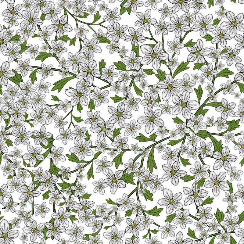 Διανυσματικό άνευ ραφής αναδρομικό σχέδιο, saxifrage λουλουδιών Γεμίζει, ταπετσαρία, συστάσεις επιφάνειας διανυσματική απεικόνιση