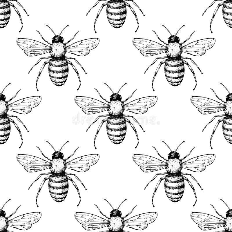 Διανυσματικό άνευ ραφής σχέδιο μελισσών Συρμένο χέρι υπόβαθρο εντόμων διανυσματική απεικόνιση