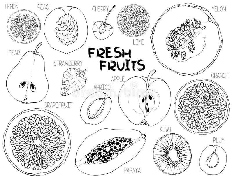 Διανυσματικό άνευ ραφής σχέδιο με τις φέτες φρούτων απεικόνιση αποθεμάτων