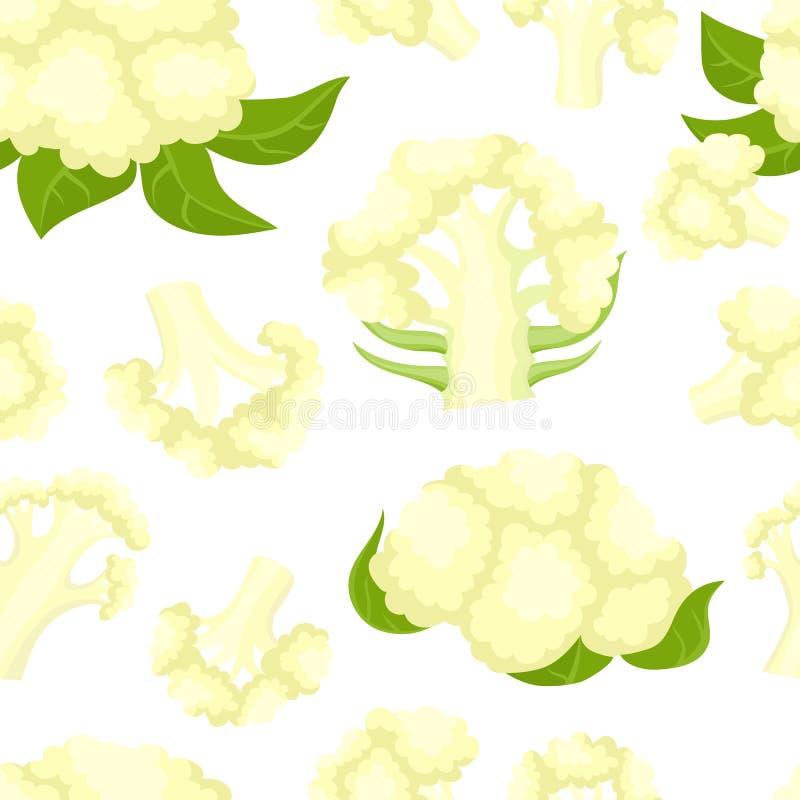 Διανυσματικό άνευ ραφής σχέδιο με το κουνουπίδι κινούμενων σχεδίων που απομονώνεται στο λευκό ελεύθερη απεικόνιση δικαιώματος
