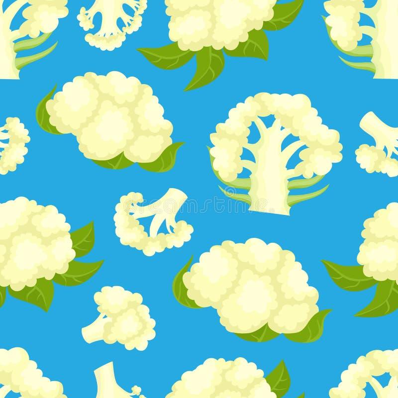 Διανυσματικό άνευ ραφής σχέδιο με το κουνουπίδι κινούμενων σχεδίων που απομονώνεται στο λευκό απεικόνιση αποθεμάτων
