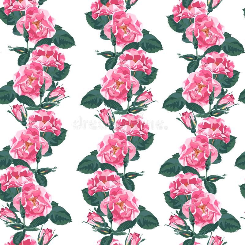 Διανυσματικό άνευ ραφής σχέδιο με briar Άγριος αυξήθηκε λουλούδια φυτειών με τριανταφυλλιές σκυλιών canina Rosa απεικόνιση αποθεμάτων