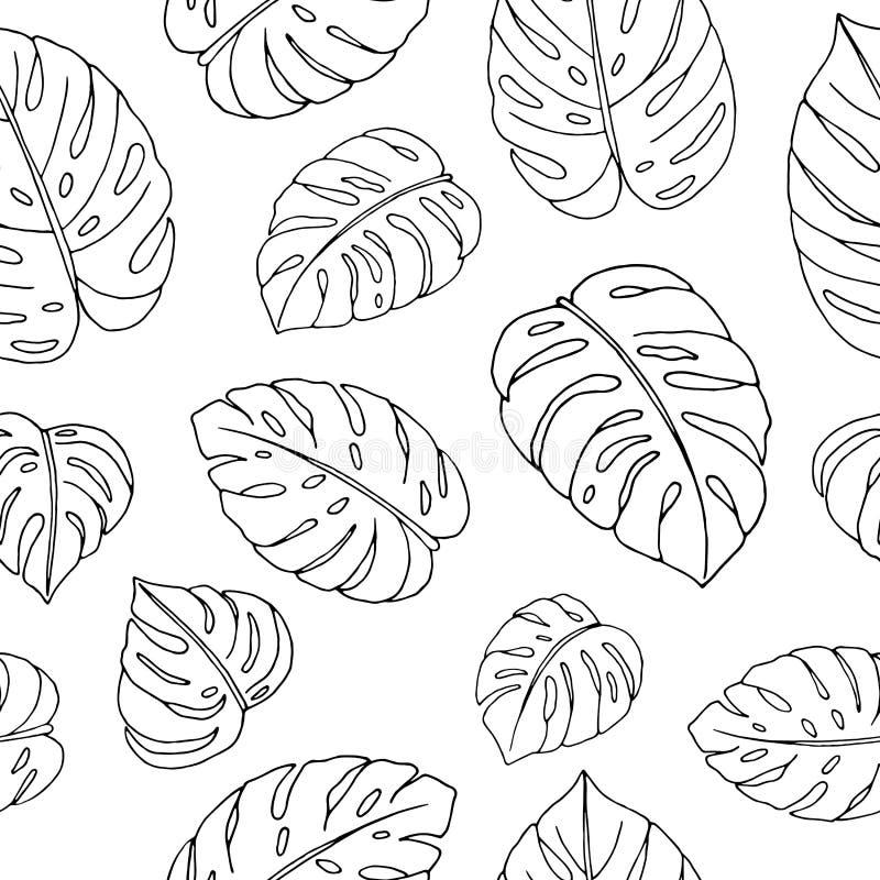 Διανυσματικό άνευ ραφής σχέδιο συρμένων των χέρι φύλλων monstera στο άσπρο υπόβαθρο απεικόνιση αποθεμάτων