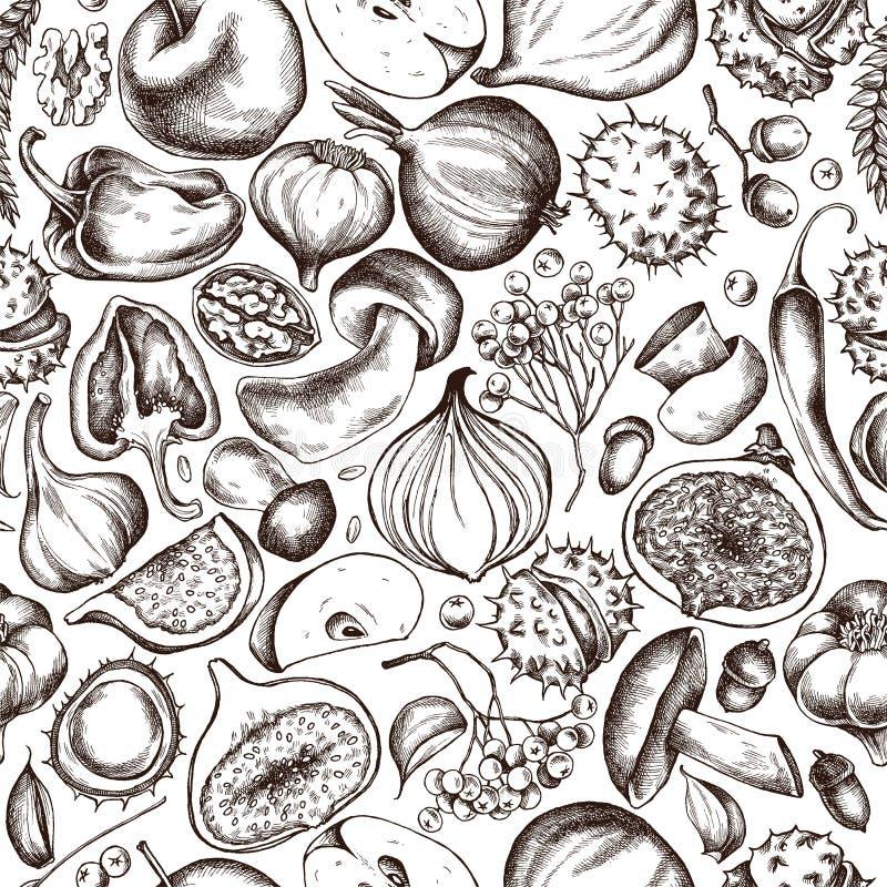 Διανυσματικό άνευ ραφής σχέδιο του σχεδίου φρούτων και λαχανικών φθινοπώρου Συρμένη χέρι διανυσματική απεικόνιση διανυσματική απεικόνιση