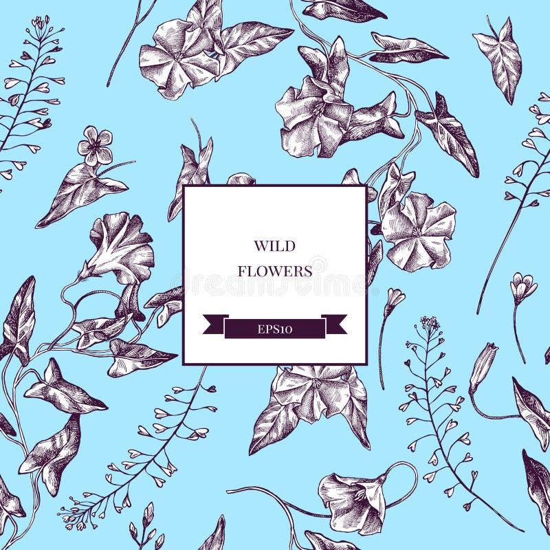 Διανυσματικό άνευ ραφής σχέδιο των άγριων λουλουδιών Συρμένη χέρι διανυσματική απεικόνιση απεικόνιση αποθεμάτων