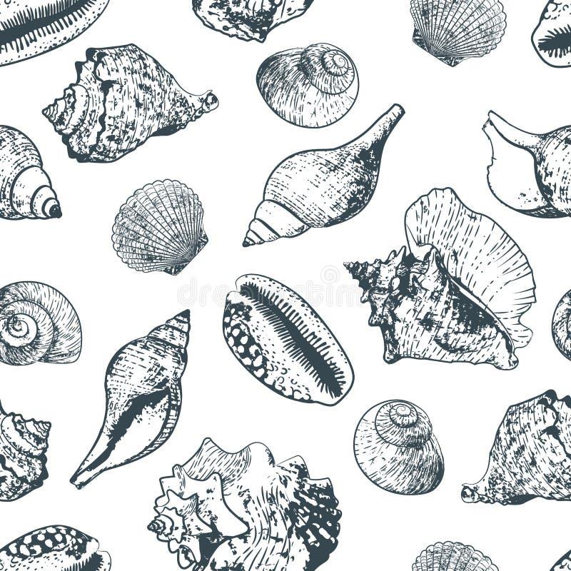 Διανυσματικό άνευ ραφής σχέδιο με συρμένα τα χέρι διάφορα θαλασσινά κοχύλια περιλήψεων Γραπτό υπόβαθρο ύφους σκίτσων ελεύθερη απεικόνιση δικαιώματος