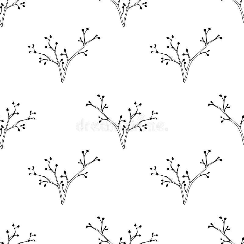 Διανυσματικό άνευ ραφής σχέδιο με συρμένα τα χέρι χορτάρια Βοτανικό υπόβαθρο σε γραπτό αφηρημένη σύσταση υφάσματος σχεδίου ανασκό διανυσματική απεικόνιση