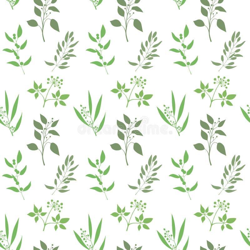 Διανυσματικό άνευ ραφής υπόβαθρο εγκαταστάσεων Ατελείωτο σχέδιο με την πράσινη σκιαγραφία κλαδίσκων και φύλλων απεικόνιση αποθεμάτων