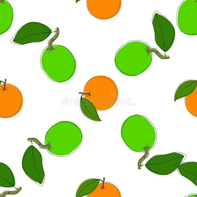 Διανυσματικό άνευ ραφής υπόβαθρο σχεδίων με συρμένους τους χέρι ασβέστες και τα πορτοκάλια στο εκλεκτής ποιότητας ύφος Στο λευκό  ελεύθερη απεικόνιση δικαιώματος