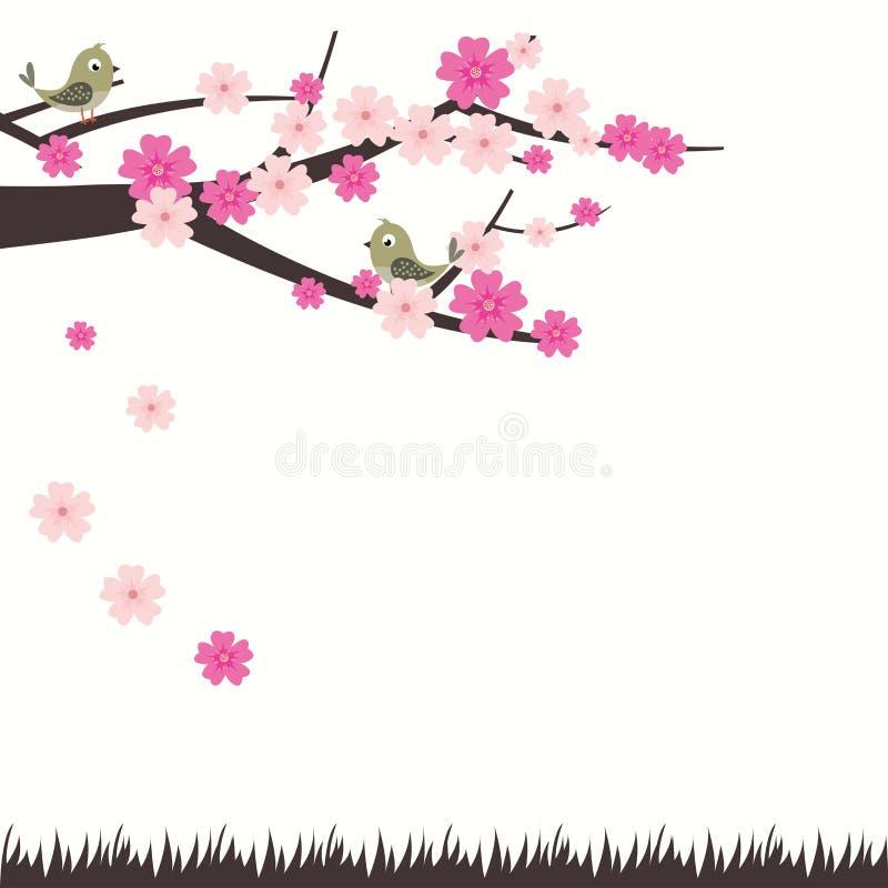 Διανυσματικό άνθος κερασιών απεικόνισης με το πουλί ελεύθερη απεικόνιση δικαιώματος