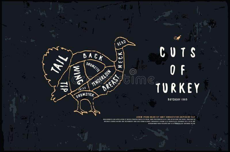Διανυσματικό διάγραμμα της Τουρκίας αποθεμάτων στο ύφος της χειροποίητης γραφικής παράστασης διανυσματική απεικόνιση